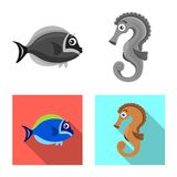 Vector illustration of sea and animal icon. Collection of sea and marine stock vector illustration. vector illustration