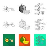 Vector illustration of test and synthetic logo. Collection of test and laboratory stock vector illustration. Isolated object of test and synthetic icon. Set of stock illustration