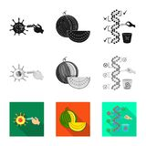 Vector illustration of test and synthetic logo. Collection of test and laboratory stock vector illustration. Isolated object of test and synthetic icon. Set of royalty free illustration
