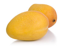 Isolated objects: mangoes. Ripe mangoes isolated on a white background royalty free stock image
