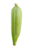 Isolated Of Corn Stock Photos
