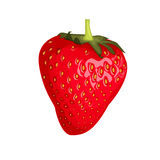 Isolated one red strawberry. On a white background. Cartoon style. Vector illustration Royalty Free Stock Photos