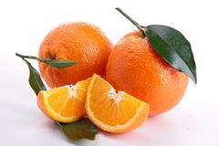 Isolated orange Stock Photography