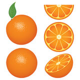 Isolated orange fruits and slices Stock Photo