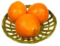 Isolated orange and minneola fruits in a basket Royalty Free Stock Photo