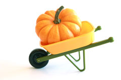 Isolated Orange Pumpkin in Wheelbarrow Royalty Free Stock Photo