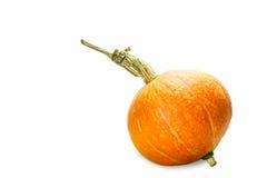 Isolated orange pumpkin on white Royalty Free Stock Photography