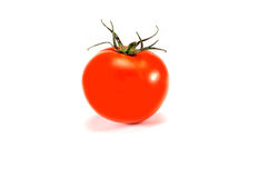 Isolated organic tomato Stock Photography
