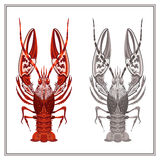 Isolated ornament crayfish in red and black color stock illustration