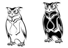 Isolated owl Royalty Free Stock Image