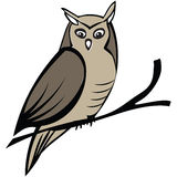 Isolated  owl. Vector isolated illustration of owl Royalty Free Stock Photography