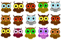 Isolated owl vector illustration vector illustration