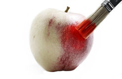 Isolated painted apple Royalty Free Stock Image