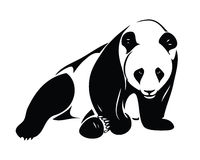 Isolated panda Royalty Free Stock Photo