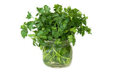 Isolated Parsley. Isolated Fresh Parsley in Jar Royalty Free Stock Photos