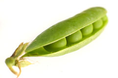 Isolated pea Stock Photography
