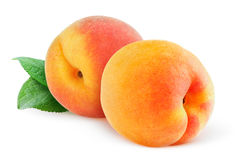 Isolated peaches or apricots Royalty Free Stock Photo