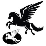 Isolated pegasus Stock Photography