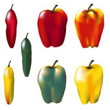 Isolated Peppers Stock Images