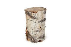 Isolated photo of birch stump Stock Image