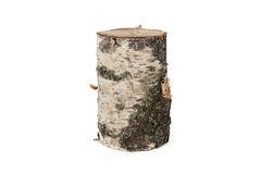 Isolated photo of wood stump Stock Images