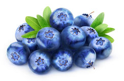 Isolated pile of blueberries Royalty Free Stock Photo