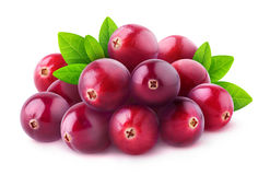 Isolated pile of cranberries royalty free stock images
