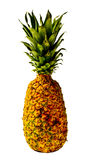 Isolated Pineapple Royalty Free Stock Photos