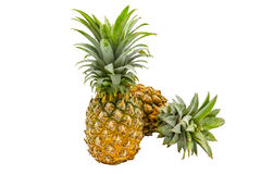 Isolated of pineapple fruit on white background Stock Photo