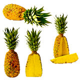 Isolated Pineapple Series Stock Photos
