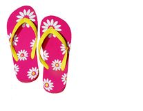 Isolated Pink Flip Flops Stock Images