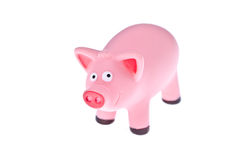 Isolated pink pig Royalty Free Stock Photos