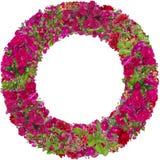 Isolated pink roses round photo frame Royalty Free Stock Image