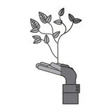 Isolated plant over hand design. Plant over hand icon. Gardening nature green and home theme. Isolated design. Vector illustration Royalty Free Stock Photo