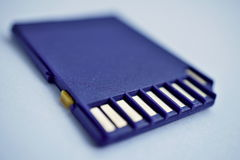 Isolated plastic compact memory card (SD card - Secure Digital card) Stock Image
