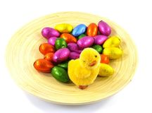 An isolated plate of bamboo with Easter eggs and a chick Royalty Free Stock Images
