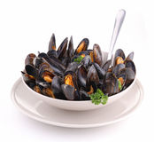 Isolated plate of mussels Royalty Free Stock Photography