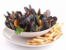 Isolated plate of mussels and french fried Royalty Free Stock Photography