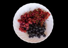Free Isolated Plate Of Berries - Raspberries, Blackberries, Redcurrants Royalty Free Stock Photos - 190283758