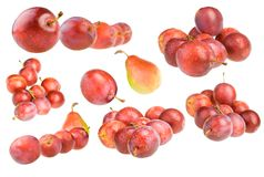 Isolated plum colection Royalty Free Stock Photography