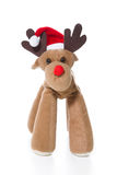 Isolated plush reindeer or elk with a santa or christmas hat Stock Images
