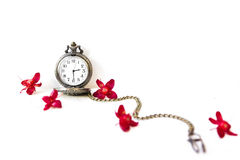 Isolated Pocket watch. With red flowers stock images