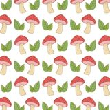 Isolated pointed fungi mushroom and leavesdesign vector illustration stock illustration