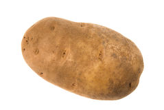 Isolated potatoe Stock Image