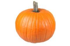 Isolated Pumpkin Stock Photos