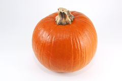 Isolated Pumpkin Stock Image