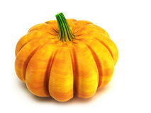 Isolated pumpkin 3d rendering Royalty Free Stock Images