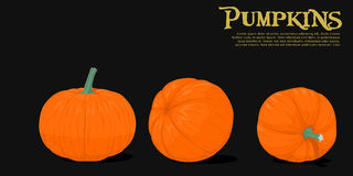 Isolated pumpkins Stock Photos
