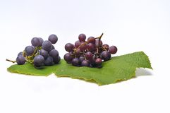 Isolated purple grapes. Grapes isolated with a vine leaf Stock Photo