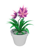 Isolated purple pink houseplant in flowerpot Royalty Free Stock Photography